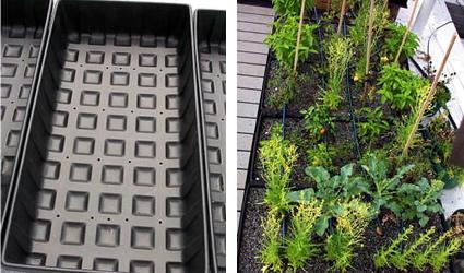Orto greentips consigli verdi - Come realizzare un giardino verticale ...